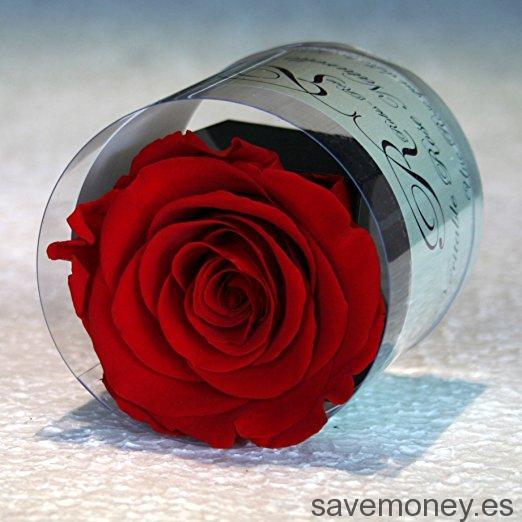 Regalos para San Valentín (III)